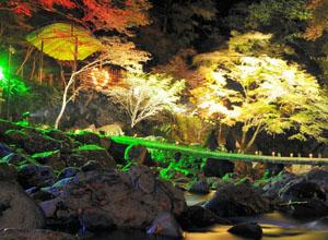 ライトアップされた紅葉。休憩所には、ろうそくがハートの形になるように飾り付けられている=名張市の赤目四十八滝で