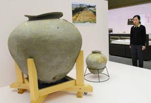 酒の醸造か貯蔵に使われた国内最大級の須恵器の大甕(右側は通常の甕)=近江八幡市の県立安土城考古博物館で