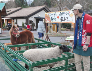 来園者を出迎えているポニーとヒツジ=伊賀市の伊賀の里モクモク手づくりファームで