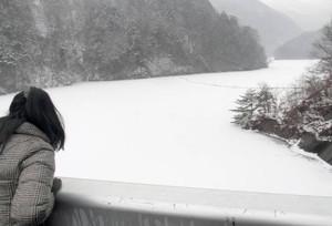 凍りついたダム湖に雪が降り積もり、白銀の世界が広がる松川ダム=飯田市上飯田で