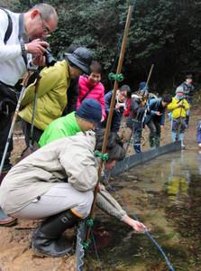 アカガエルの卵塊を眺める参加者ら=敦賀市の中池見湿地で