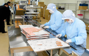 「YUKIZURI」の包装作業をする従業員=津幡町庄で