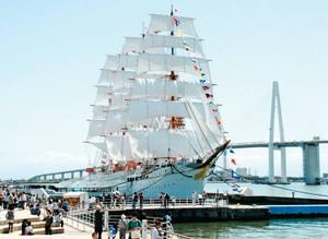 新湊大橋を背景に、白い帆を張った帆船「海王丸」=射水市の海王丸パークで