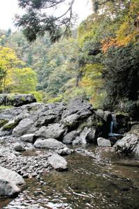 渓流沿いの木々が色づき始めた荒俣峡=小松市赤瀬町で