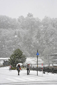 強く降る雪に姿を隠した越前大野城=大野市明倫町で