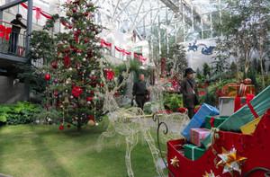 「サンタクロースの町」をテーマに飾り付けした大温室=可児市の花フェスタ記念公園で