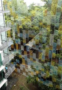 研究棟に展示された巨大な漁網のアート作品「そらあみ」=豊橋市の愛知大で