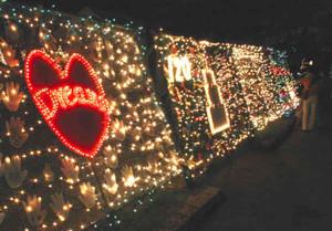 夜を彩るイルミネーション=岐阜市の岐阜公園で