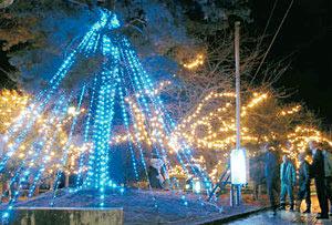 市民からの募金で新設したLEDのツリー=滑川市で