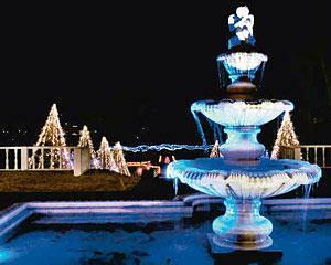 青白い光に照らし出された噴水と木々=氷見市稲積で