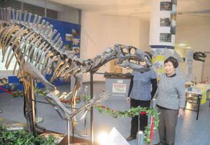 展示された恐竜の骨格標本=敦賀市神楽町2で