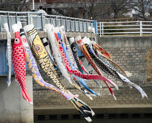 春を待たずに現れ、注目を集めているこいのぼり=蟹江町蟹江新田のサンサンブリッジで