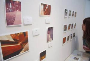 フォト和紙を使った「ココロほっこり展」。写真に柔らかな空気がにじむ=福井市のふくい工芸舎で