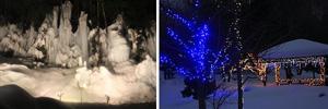 (左)幅30メートルほどに連なる樹氷=高山市奥飛騨温泉郷福地で (右)2万個の発光ダイオードが光るイルミネーション=高山市奥飛騨温泉郷栃尾で