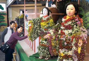 彩り豊かな菊を身にまとう人形たち=飯田市の元善光寺で