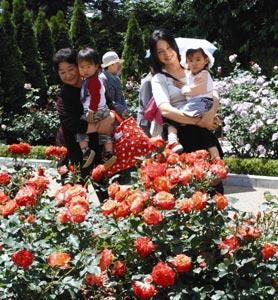カラフルなバラの競演が楽しめるフラワーパーク=浜松市西区舘山寺町で