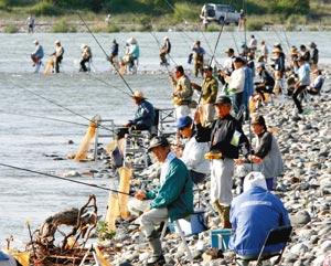 早朝から大勢の釣り人でにぎわう天竜川河川敷=1日午前6時50分、磐田市で