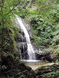 緑豊かな自然に囲まれた八曽滝=犬山市で