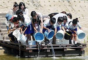 ため池にメダカを放流する子どもたち=鯖江市米岡町で