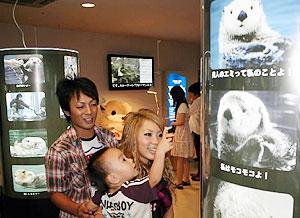 歴代のラッコの写真などが並ぶ企画展=鳥羽市の鳥羽水族館で