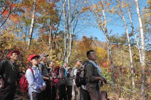 登山道からの景色を楽しむ参加者=高山市奥飛騨温泉郷の福地山で