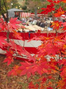 紅葉を見ながら親交を深め合った観楓会=岡谷市の出早公園で