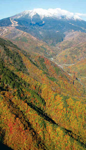 山頂部が雪化粧し、ふもとの紅葉と美しさを競い合う御岳山=木曽町上空で、本社機「おおたか二世」から