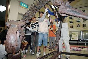 恐竜の骨を組み立てる児童たち=尾鷲市中央公民館で
