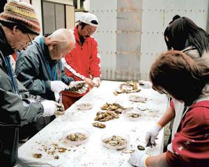 地元の漁師に指導を仰ぎながら、カキむきに挑戦する参加者