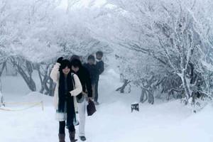 山頂を歩きながら、迫力ある樹氷を堪能する人たち=菰野町の御在所岳で