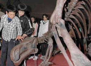 完成した「プロバクトロサウルス」の骨格を眺める児童ら=伊勢市のハートプラザみそので