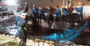 10日の試乗会で、網起こしによって青い光を放つホタルイカの群れ=滑川市沖で