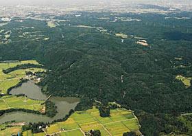 増山杉が茂る城跡(中)。中央左の増山大橋の下部には城下町土塁跡も=南側から望んだ航空写真(砺波市教委提供)