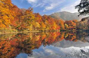 水面にも燃える秋 大野の刈込池で紅葉見ごろ