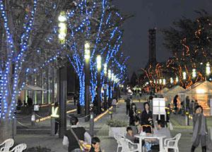 街路樹を青や黄色に彩るイルミネーション=富山市牛島町で