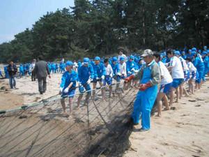 地引き網を引いて楽しむ小学生たち=敦賀市の気比の松原で