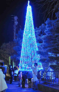 駅前を彩るツリー形のイルミネーション=あわら市のJR芦原温泉駅前で