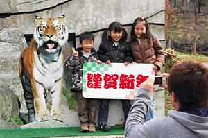 園内で飼っているトラのパネルの前で記念撮影する家族=富山市ファミリーパークで