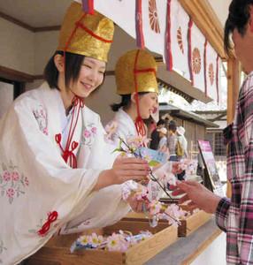 昨年の花換まつりで来場者と桜の造花の小枝を交換する福娘=敦賀市金ケ崎町の金崎宮で