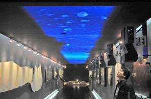 古代の海をイメージした映像を投映する「動く古代天井」。手前右は提案した一島啓人さん=勝山市の県立恐竜博物館で