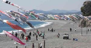 海からの風を受けて悠々と泳ぐこいのぼり=熊野市の七里御浜海岸で
