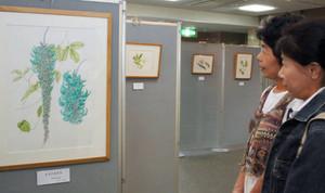 繊細な描写の作品が並ぶ植物画展=草津市立水生植物公園みずの森で