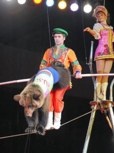 開幕したボリショイサーカスの名古屋公演で観客を魅了したクマの綱渡り=愛知県体育館で