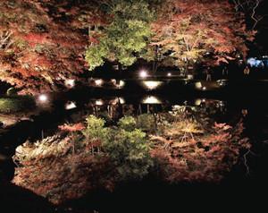 ライトアップされ水面に美しく映えるモミジ=土岐市の曽木公園で