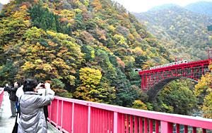 紅葉が見ごろを迎え写真を撮る観光客=黒部市宇奈月温泉で
