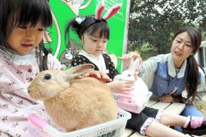 ウサギをひざの上において写真に納まる子どもたち=2日、浜松市西区舘山寺町で