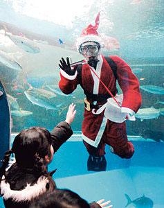 水槽の中から入館者に手を振るサンタクロース姿のダイバー=魚津水族館で