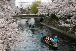 昨年の一日イベントで舟下りを楽しむ人々=大垣市の水門川で