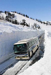 立山駅-弥陀ケ原間を走る高原バスの今季第1便=富山県立山町の立山黒部アルペンルートで