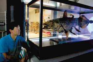 シーラカンスの標本を前に、「深海は分からない部分があるから面白い」と話す石垣館長=沼津市千本港町で